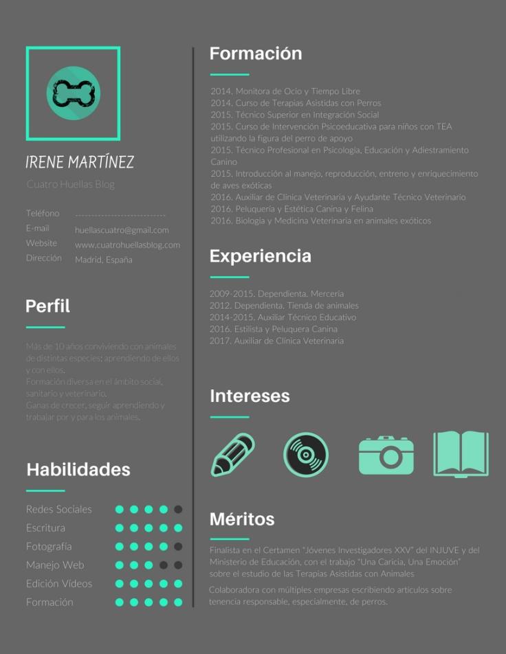 Minimal Multimedia Artist Resume.jpg